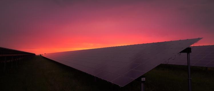 Marketingleiter Umfrage Studie Solarwirtschaft